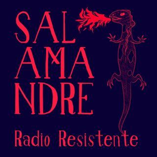 Radio Salamandre