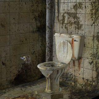 164 - La verità sui bagni pubblici