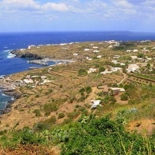 Da Pantelleria parte la sfida di un'agricoltura senza chimica