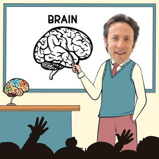 DB 050: Neuroscientist David Eagleman Gets Inside Our Heads