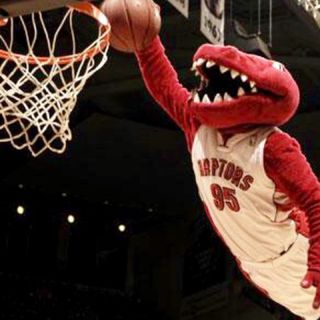 Toronto Raptors 2019 NBA Champions!