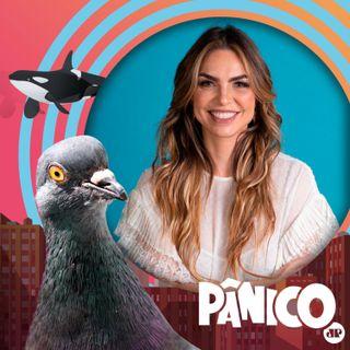 PÂNICO - 05/05/2021 - Paula Belmonte