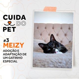 #3 Meizy | Adoção e adaptação de um gatinho especial