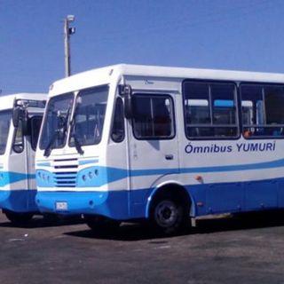 Vuelven los ómnibus a las calles matanceras