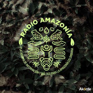 Radio Amazonía