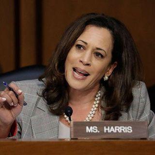 2020: Can She Win?