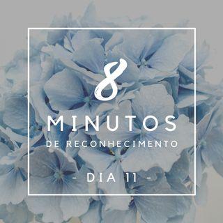 8 Minutos de Reconhecimento - Dia 11