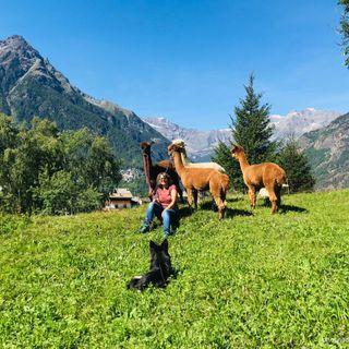 Gli alpaca, la loro lana e i prodotti naturali: intervista alle allevatrici Ladina e Simona - 1