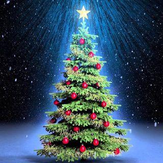 Feliz Navidad y Gracias