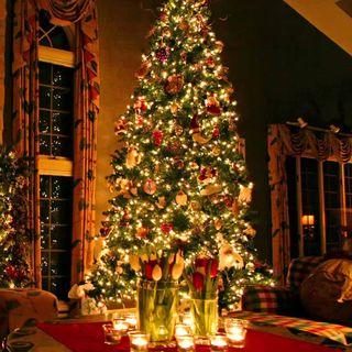HONESTY [on-uh-stee] at CHRISTMAS [kris-muh s]
