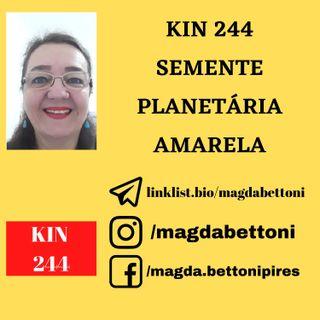 KIN 244 - SEMENTE PLANETÁRIA AMARELA - 19ª Onda Encantada do Tzolkin