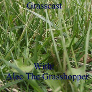 Grasscast: Should we spank our children