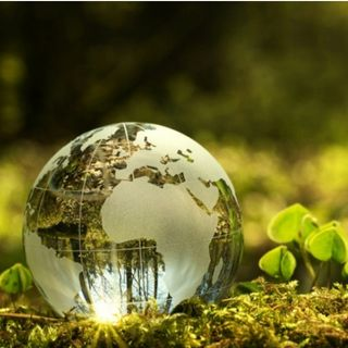 Negocios Verdes, una oportunidad para aprender Con Mauricio  cardenas #203
