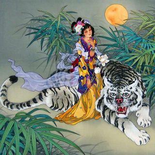 Se cavalchi una tigre devi cercare di non scendere