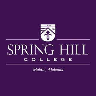 Dr. Joseph Lee of Spring Hill College shares info about #highereducation costs on #ConversationsLIVE ~ @sprhill #shcfamily #studentloans