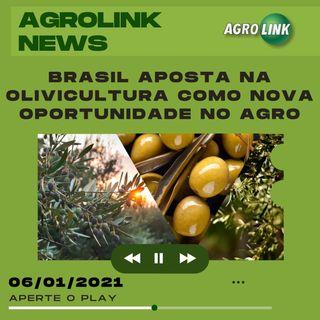 Agrolink News - Destaques do dia 06 de janeiro