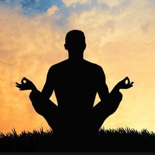 Meditação para Militantes