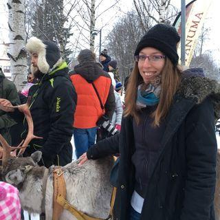 37. Poroja tapaamassa Oulun keskustassa