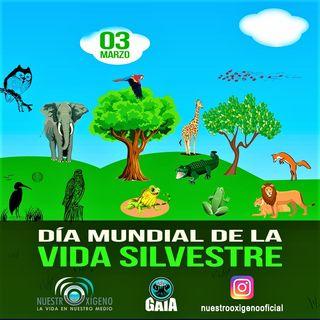 NUESTRO OXÍGENO 03 de marzo Día mundial de la vida silvestre