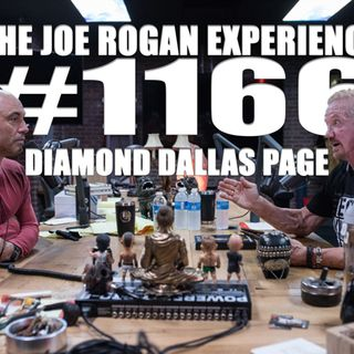 #1166 - Diamond Dallas Page