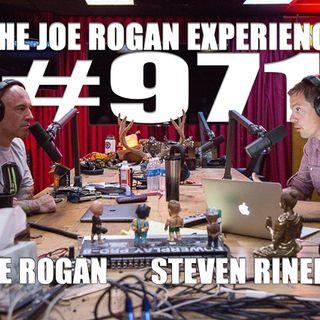#971 - Steven Rinella