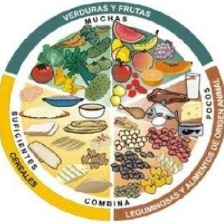 Nutrición y su relación con la salud