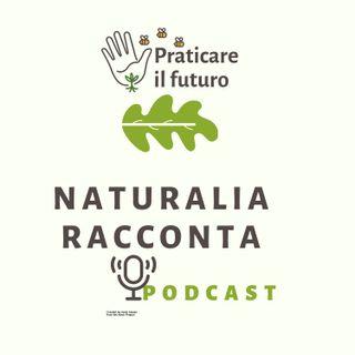 NaturaliaRacconta capito IV-V