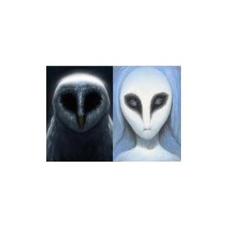 The Messengers:  Owls & UFOs with Guest/Expert Mike Clelland