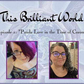 "TBW-  Episode 2 ""Panda Love in the Time of Corona"""