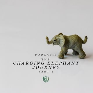 Embrace Your Charging Elephant, Holiday Health Journey, Part 2