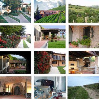 Tenuta Agricola tra Nizza Monferrato e Canelli