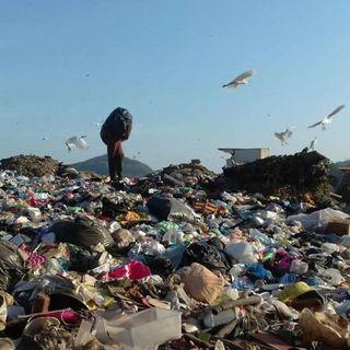 Manejo de la basura
