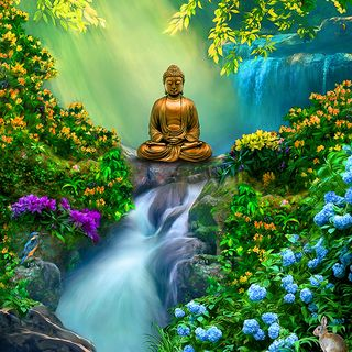 Mindful morning meditation