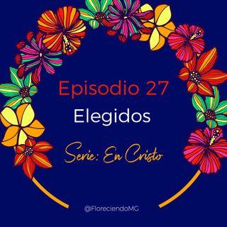 Episodio 27 - Elegidos