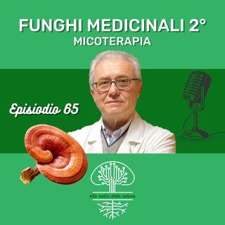 Funghi Medicinali Parte II