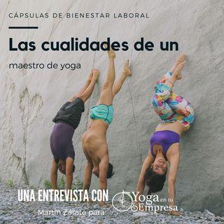 Episodio 14 - Las cualidades de un maestro de yoga