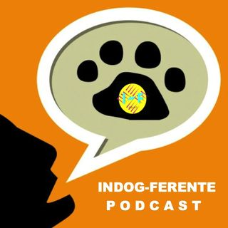 Indog-ferente - SobrePerros #interpodcast2016