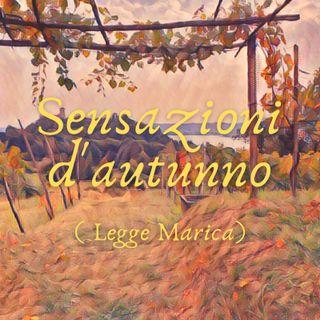 Sensazione d'autunno( Legge Marica)