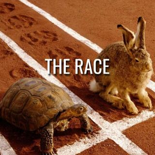 The Race - Morning Manna 3099