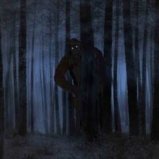 A Dark Morning Bigfoot Kielder & Killhope and Researchers are chased from the woods