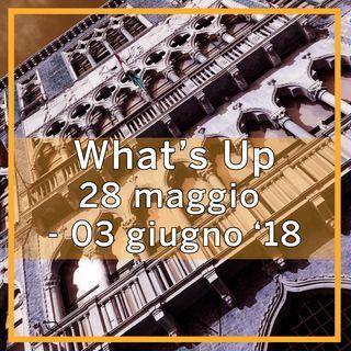 What's Up: 28 maggio-3 giugno