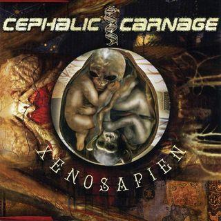 Cephalic Carnage - Divination & Volition