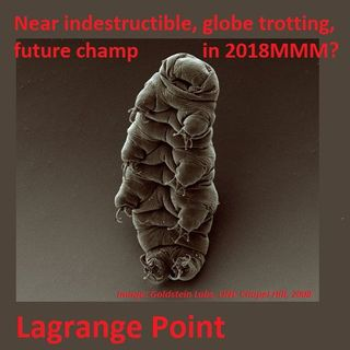 Episode 265 -March Mammal Madness preview, uncovering Tardigrades and the history of lungs