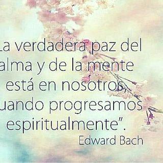 Verdades Fundamentales de Dr. Bach