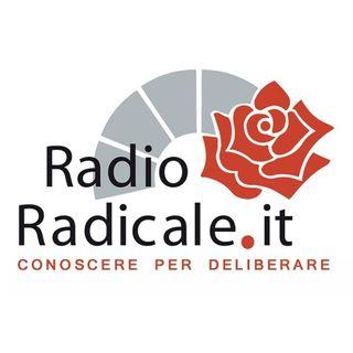 Salviamo Radio Radicale: intervista al direttore Alessio Oreste Falconio