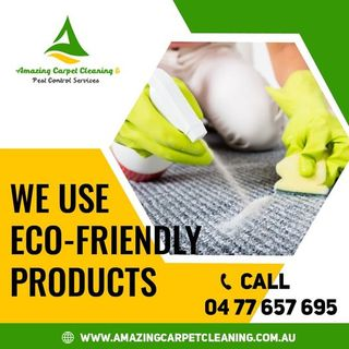 Excellent Professional For Carpet Cleaning