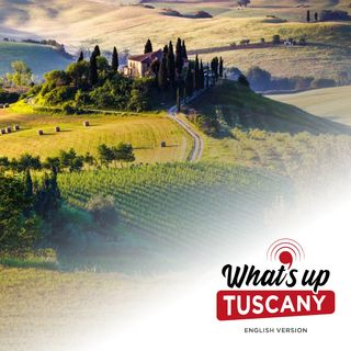 Tuscan 101: 5 words you need to know - Ep. 42
