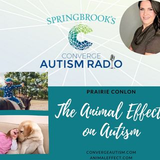 The Animal Effect On Autism