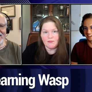 Learning To Develop With Wasp