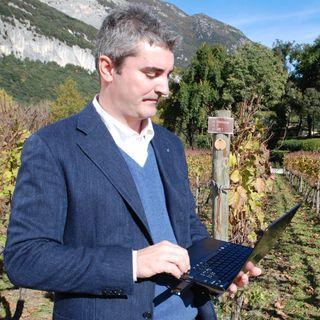 Andrea Faustini | Maestri del vino italiano